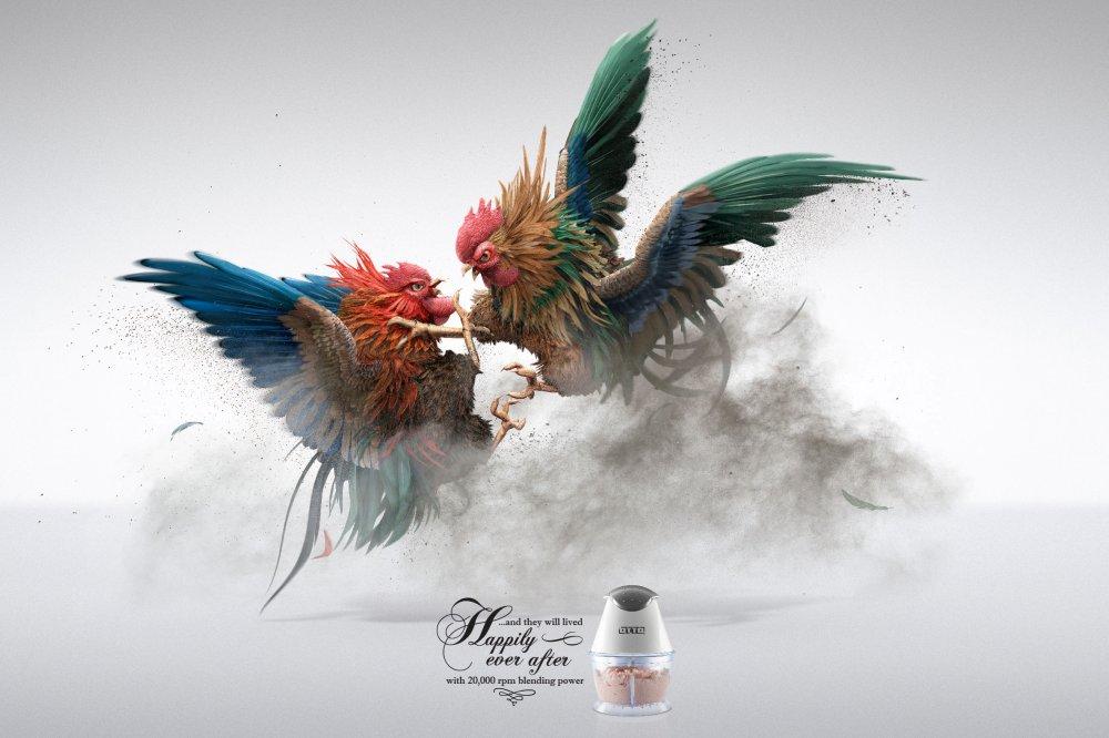 Ayam Jantan Bertarung